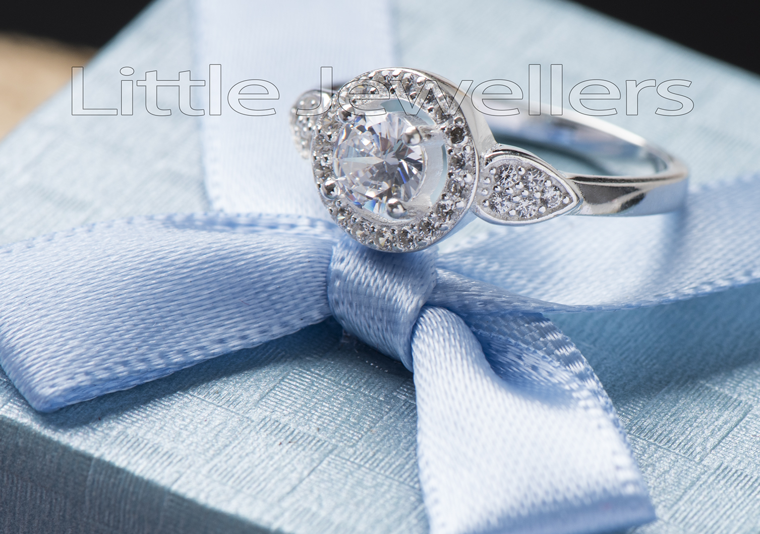 A brilliant silver halo style Engagement ring
